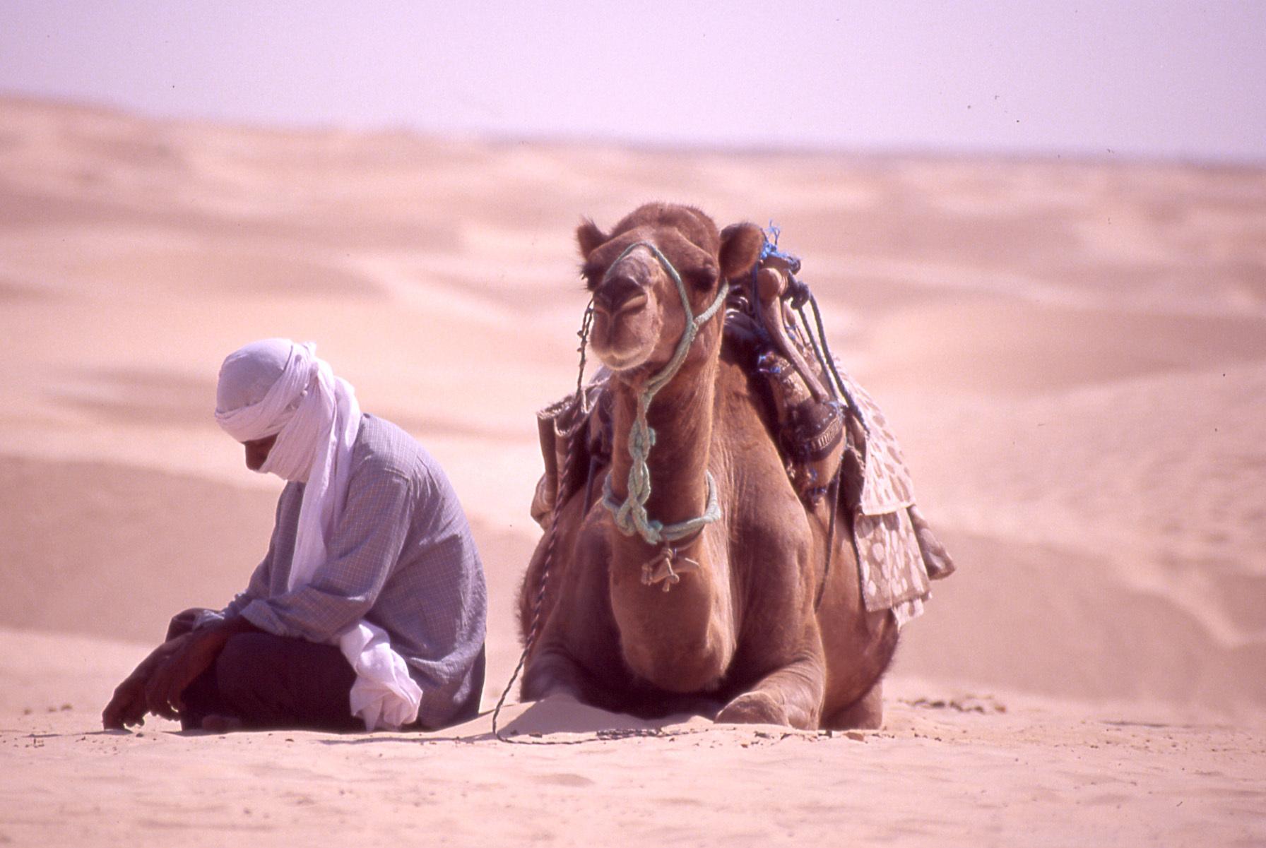 Autorisation de tournage-tunisie